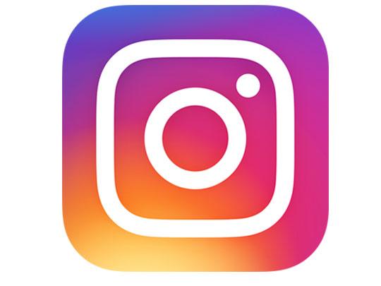 Flower Van Remuera Instagram